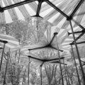 bosque de pétalos de fibra de vidrio