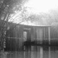 la puerta del mar de bambú | Francisco Camino
